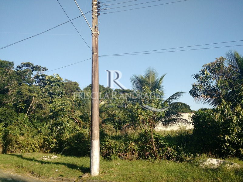 Ref. PR66 -