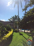 Ref. VH291217 - Jardim